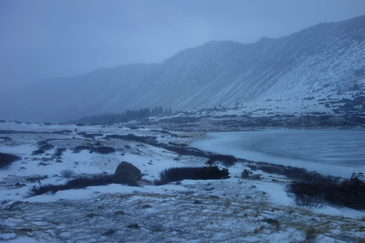 As winters grip tightens - the lakes begin to freeze. And we enter every now and again a Winter Wonderland.