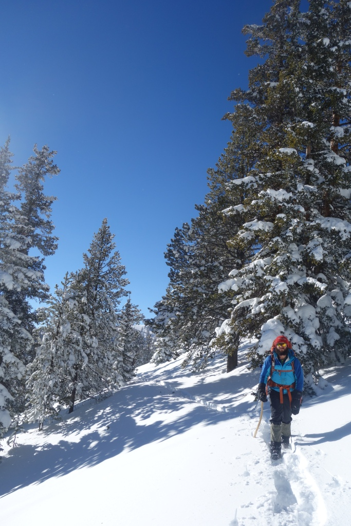 Some snow shoeing in Southern Colorado. Blah!